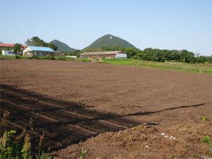 荒廃農地緑化3